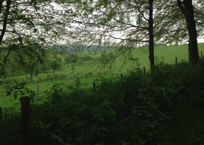 omgeving-paradieske-foto-13